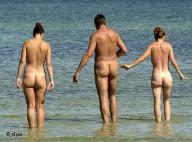 Nudists on a beach